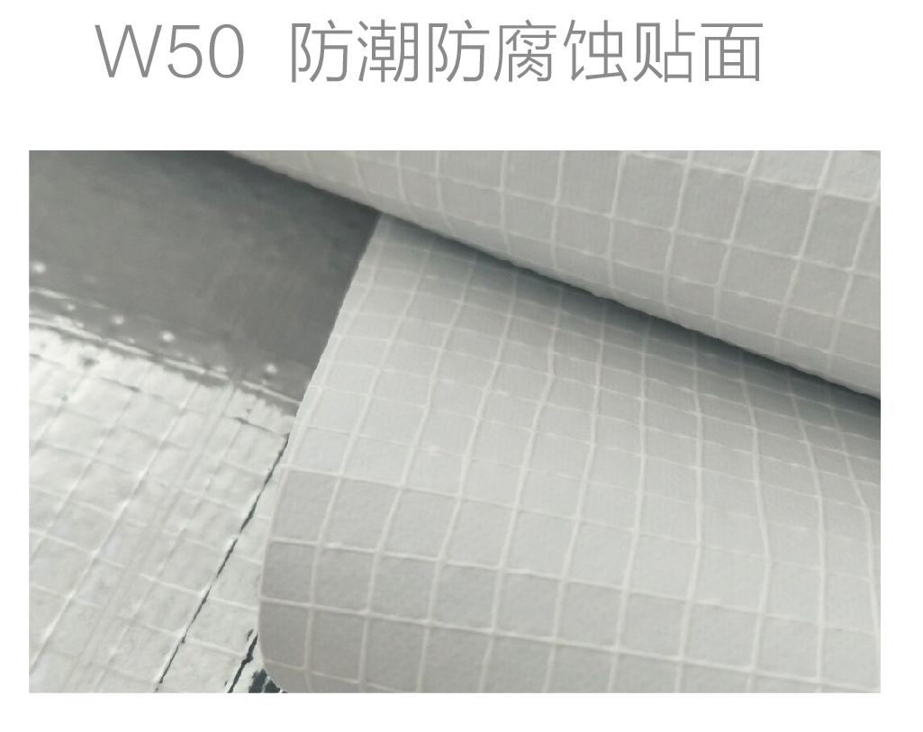 W50防潮防腐蚀贴面