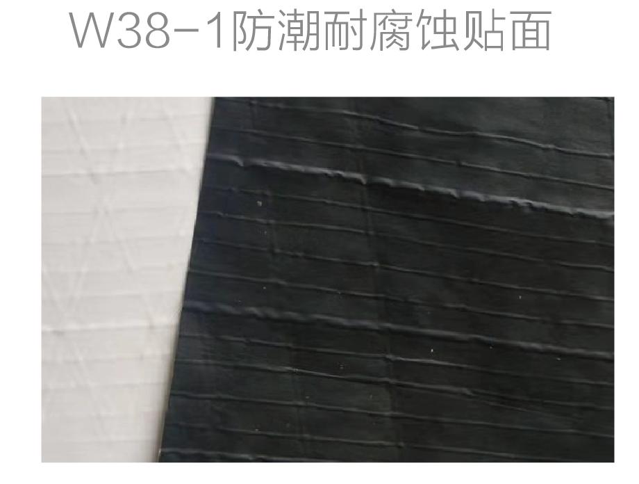 W38-I防潮耐腐蚀贴面