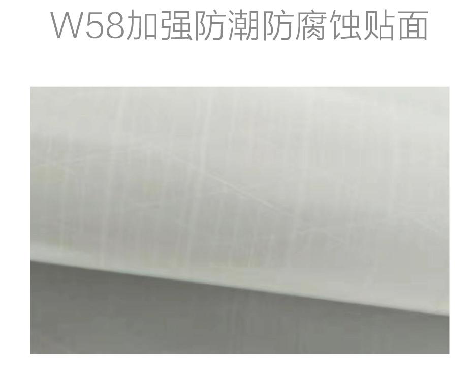 W58加强防潮防腐蚀贴面